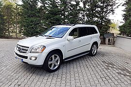 2010' Mercedes-Benz GL 320